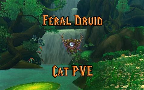 PVE Feral Druid DPS Guide (WotLK 3