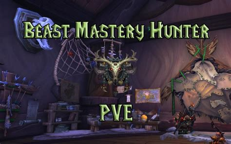 PVE Beast Mastery Hunter DPS Guide (WotLK 3