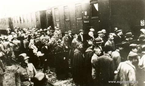 Historical pictures and documents / Gallery / Auschwitz